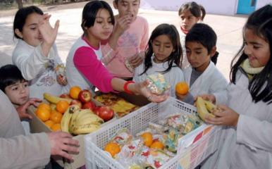 La Ley 26.396/08 obliga a que quioscos y comedores escolares cuenten con opciones saludables // Fuente: diario Día a Día (Córdoba)